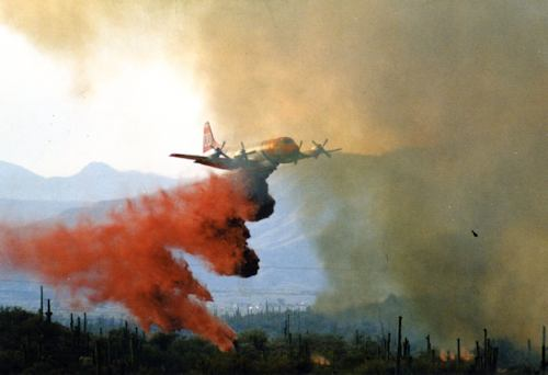The Rio Fire Remembered - July 7, 1995 - A Peek at the Peak Magazine